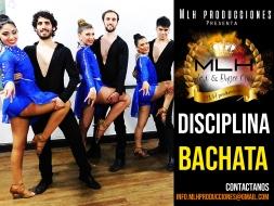 disciplina bachata