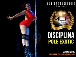 disciplina pole exotic