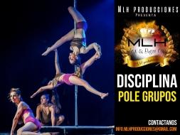 disciplina pole grupos