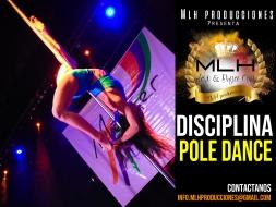 disciplina pole